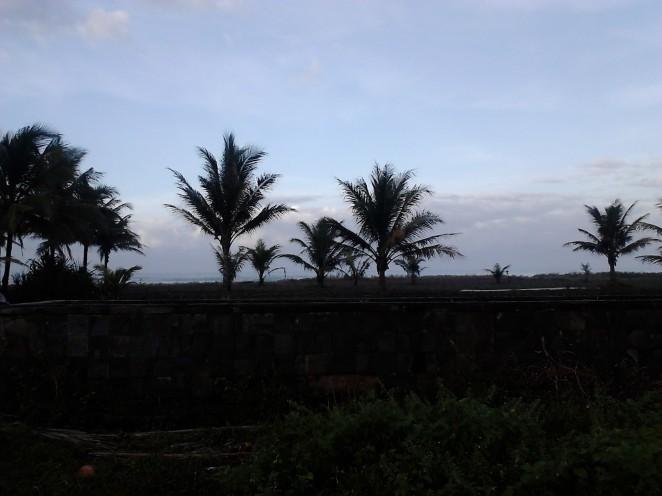 Pangandaran kala petang dengan siluet pohon-pohon kelapanya. Gue paling suka sama foto ini.