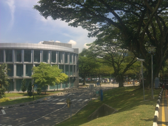 The green campus of NUS