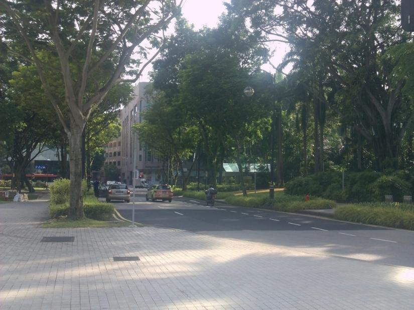 Kawasan Penang Road yang rimbun