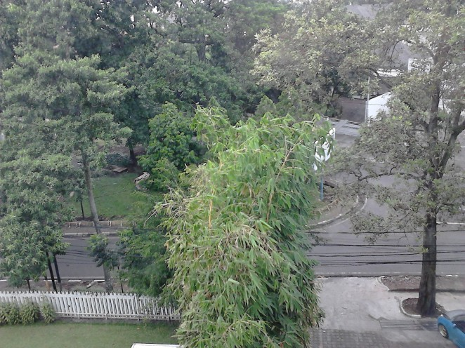 View dari jendela Naval Hotel