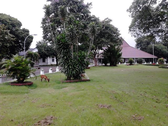 Rumah Dinas Bupati Cirebon