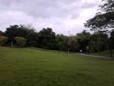 Padang berumput yang rapi