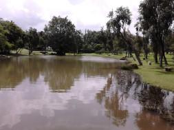 The pond at Bonsai Garden