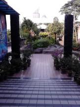 The little park
