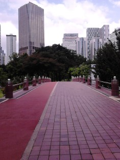 The bridge and the skyscrapers