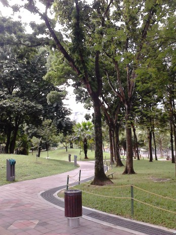 The walking track