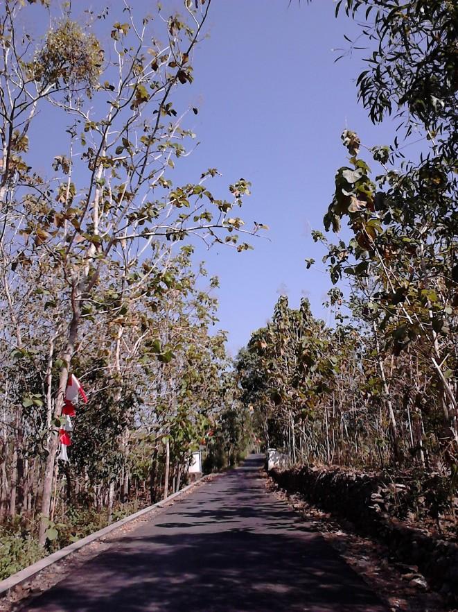 Jalanan khas pedesaan kami