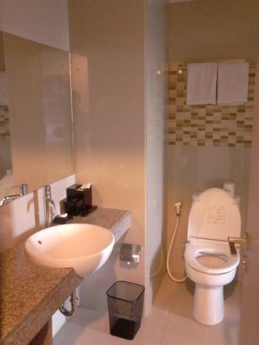 Wastafel dan toilet yang berdampingan