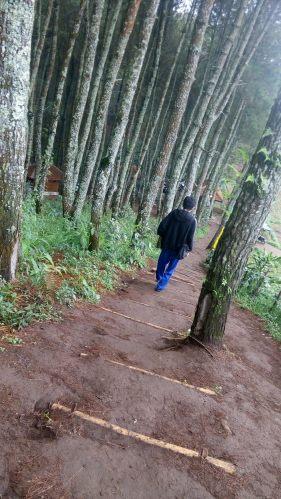 Berjalan turun melalui jalan yang benar