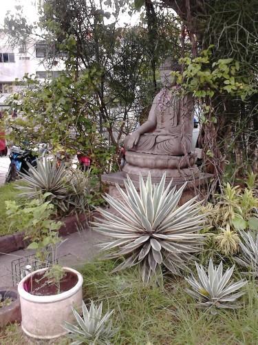 Patung Buddha di bawah pohon