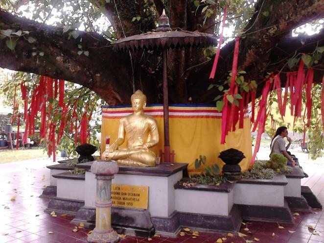 Patung Buddha Emas di bawah Pohon Bodhi