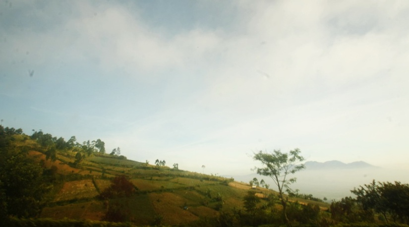 Trying to capture the view while riding the car