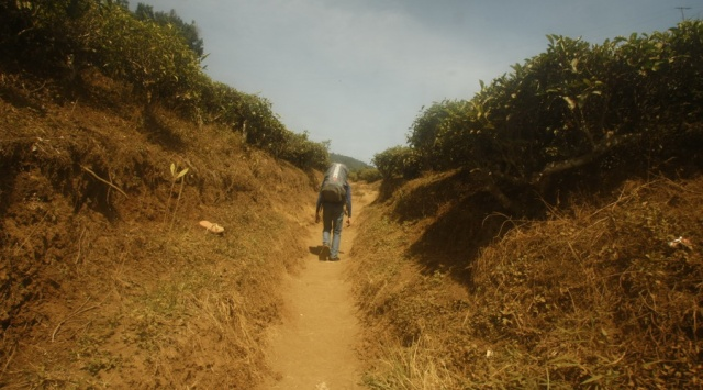 Memulai pendakian Gunung Cikuray dengan jalur berdebu