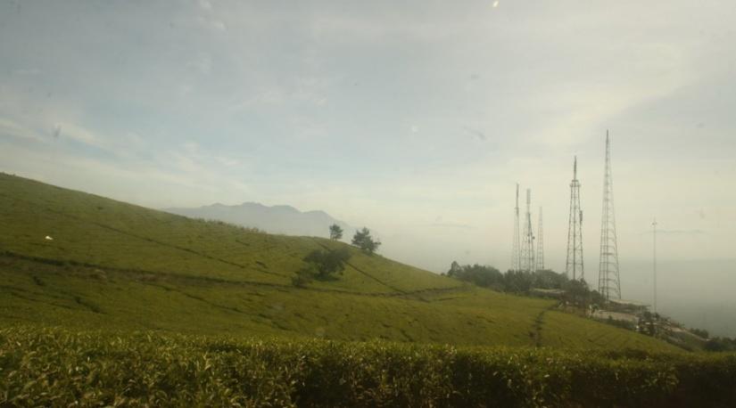 Panorama alam yang memanjakan mata di jalur pendakian Gunung Cikuray