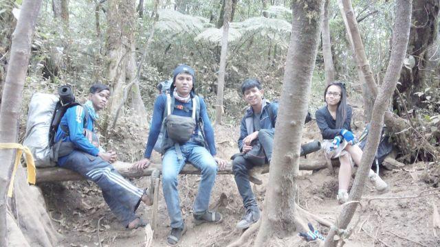 Beristirahat di batang pohon, Gunung Cikuray