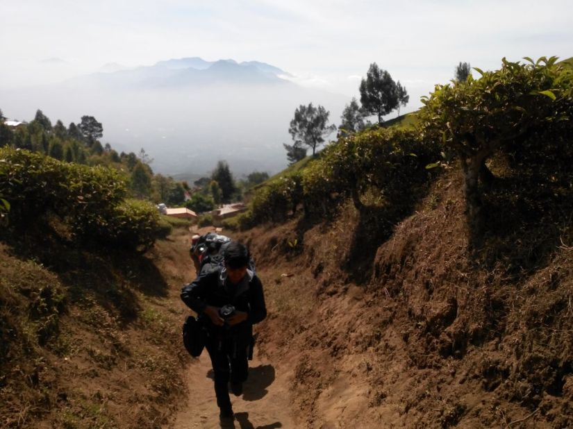 Melalui celah tanah kering Gunung Cikuray