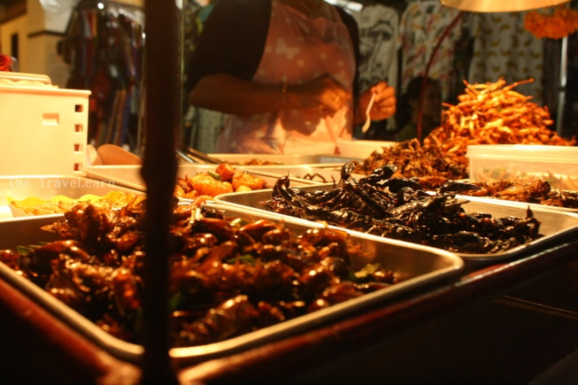 Thai Fried Insects anyone?