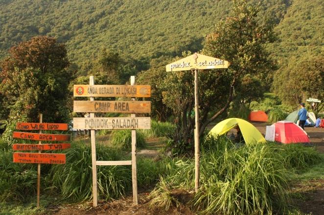 Pondok Saladah, Gunung Papandayan